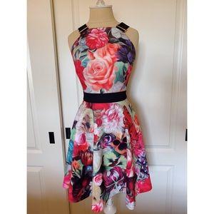 Ted Baker Designer Dress